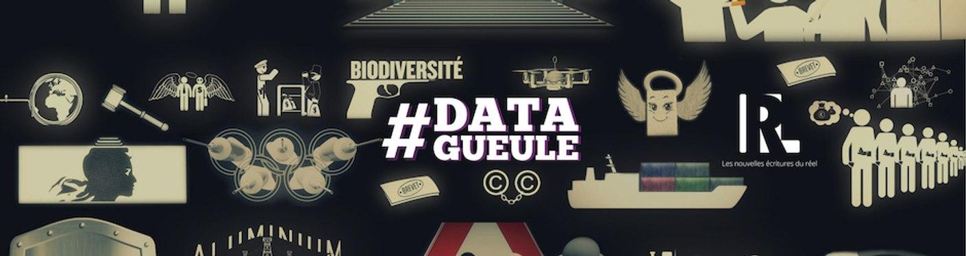 #DataGueule