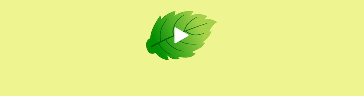 Video Mint