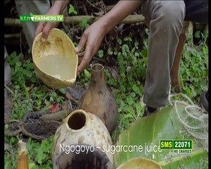 Farmers TV Live Stream