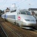 Manu Teo Train
