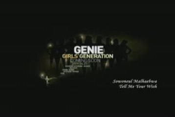 [FANMADE] Girls Generation - Tell Me Your Wish (Genie)