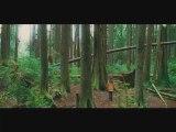 Teaser 1 Twilight - Chapitre 2 : Tentation