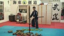 Korean Style Double Cuts Kill Bill Sword Katana Tameshigiri
