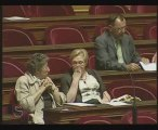 Intervention Mme Cohen Seat  Communistes  Parti Gauche
