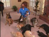Rest in Peace Billy Mays