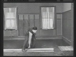 Buster Keaton 2-One Week