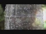 Montage effets visuels : démo Coca Cola – CGS 3D