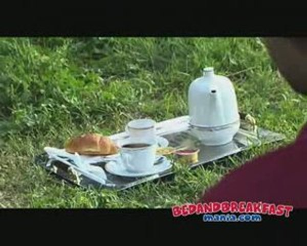 Viral Video Bed and Breakfast Mania