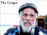 [FREE MUSIC FESTIVAL 2011 EN LIVE] Entrevue La Caravane Passe, Yael Naim & The Congos