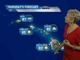 Hawaii Vacation Forecast - 07/04/2011