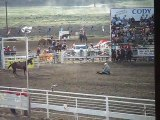 Rodeo #2 (Cody, WY, 4th of July, Stampede Rodeo)