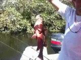 Centre de peche au senegal le Katakalousse pêcher la carpe rouge