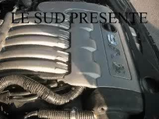 205 V6