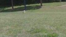 Au bord du lac avec son ballon