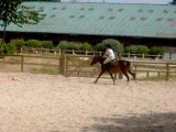 cheval équilibre 018
