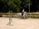 cheval équilibre 019