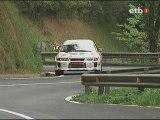 VII. Rallysprint de San Miguel 08-08-2009