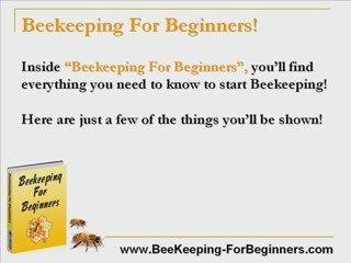 Beginning Beekeeping – Beginning Bee Keeping