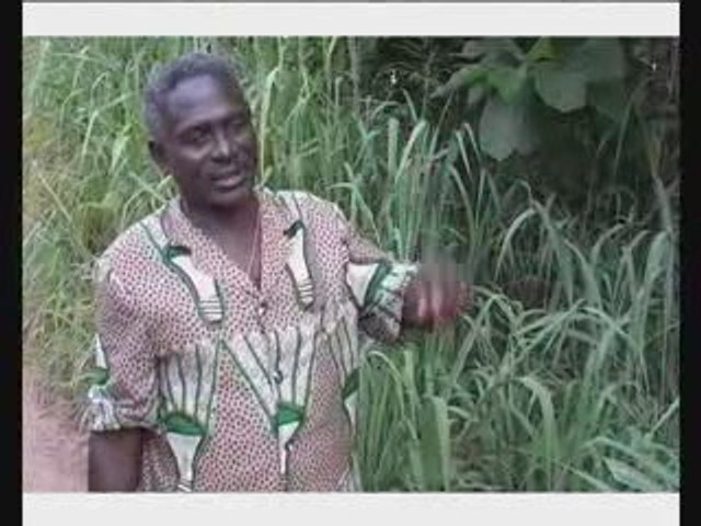 Les Amis de la Terre Togo par Barbier Cédric