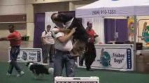 Sit Means Sit - Douglasville Dog Obedience - Fla Pet Expo