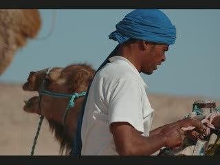 Sahara Zaafrane - Chott el Jerid