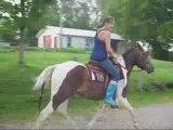 Montage Jessica et son cheval