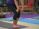 CYH-Hatha Vinyasa Flow Yoga