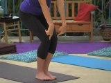 Hatha / Vinyasa Flow Yoga