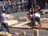 Concours bucherons Corcelles