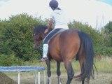 mon cheval et moi (liberté)