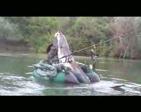 Silure en float tube de 2m10 Salem et Fred à Pont-à-Mousson