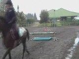 cours particulier de saut d'obstacle cheval