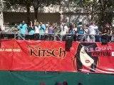 Techno parade 2009 Virtual Dj