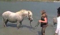 fête du vent 2009 nailloux bain des poneys
