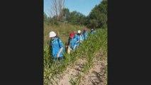 Camp Scouts et Guides de France 2009