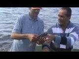 Türk Balık Avı 2.Kıyı Organizasyonu 4.Bölüm