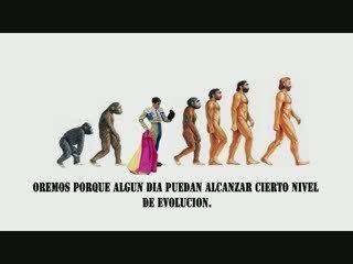 NO A LAS CORRIDAS DE TOROS / PERCIBI2 2009