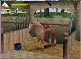 Mes chevaux de mission équitation online