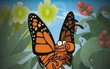 34 Mariposas