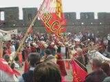 Carcassonne 2009 Manifestation Occitane
