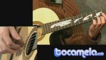Gran Vals - Francisco Tárrega [Tutorial Guitarra]