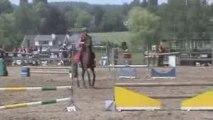 jumping steerebeek des jeunes chevaux