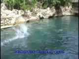 Expérience avec dauphins en vacances au Mexique