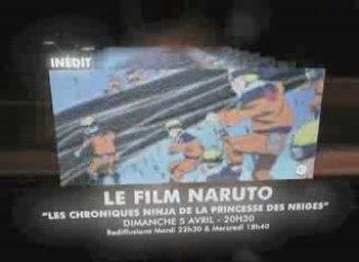 BA Naruto Les chroniques Ninja de la Princesse des neiges