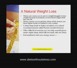 Online Diet Plan