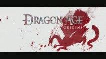 Dragon Age Origins: This is War !!!