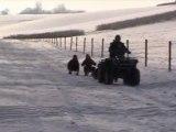 pur-sang-arabe , haras de croissart chevaux,  neige 11-11-09