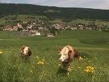 Travers - Val-de-Travers (Suisse)
