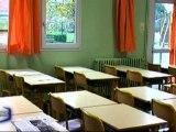Grippe A : 2 nouvelles écoles fermées en Vendée