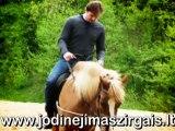 Jodinejimas Zirgais vilniuje, jojimo pamokos jojimas zirgais